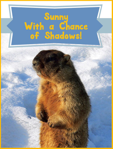 Sunny with a chance of shadows: groundhog out of his hole