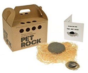 Pet rock box and contents